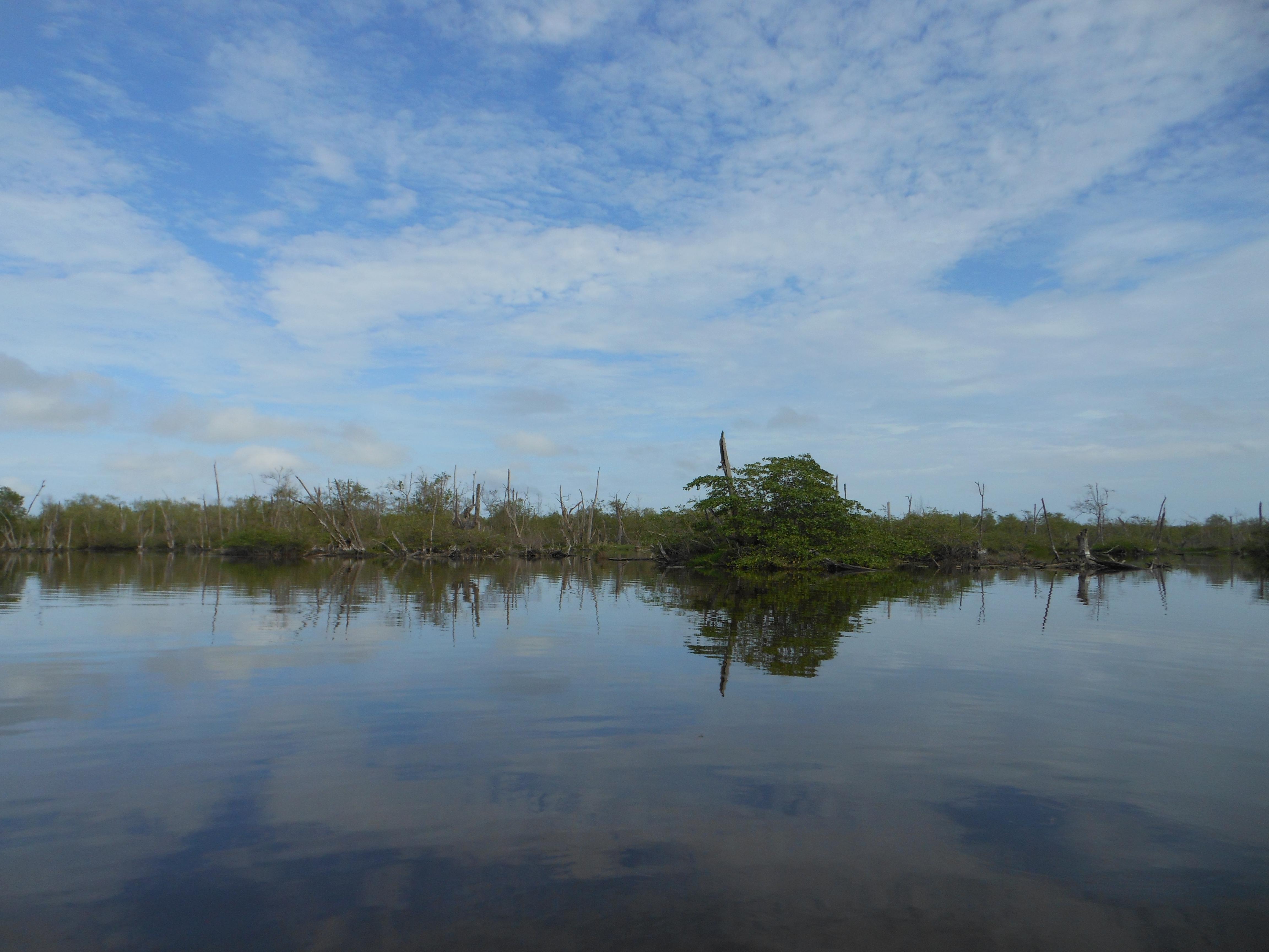 Suriname blog #10: Bigi, Bigi Pan